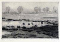 Feuchte Oderwiese, Radierung, Aquatinta, 1989