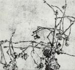 Dürre Zweige, Radierung, 1980