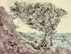 Der Baum, Kaltnadel/Farbaquatintaradierung, 2011