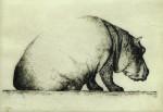 Flußpferd, Radierung, 2008